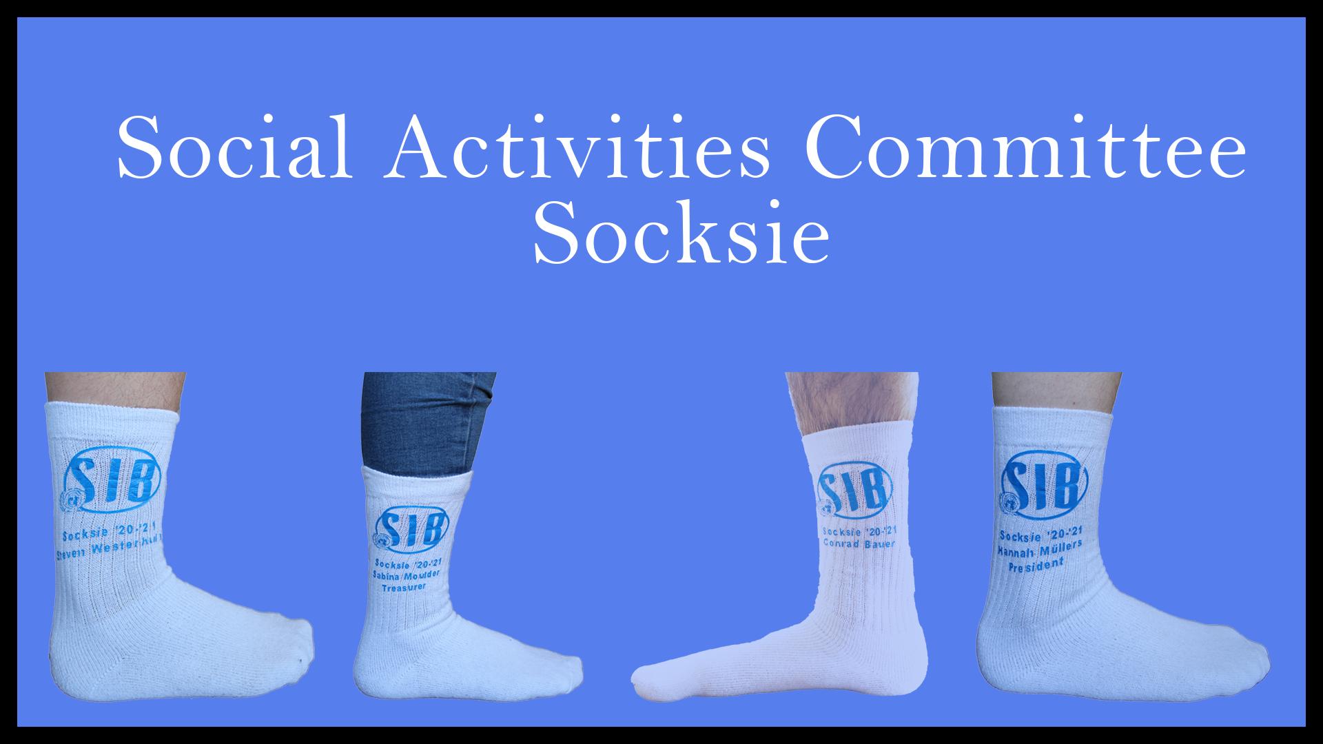 Committee Picture Social Activities